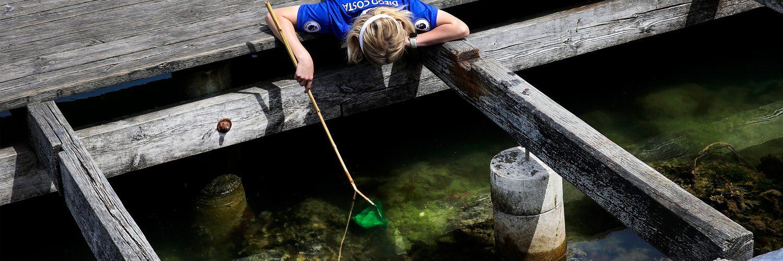 Krabbefiskeri Rørvig Havn