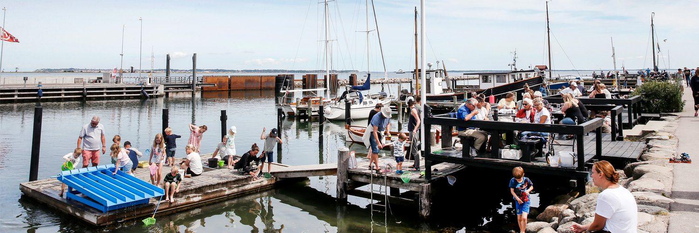 Rørvig Fisk Rørvig havn